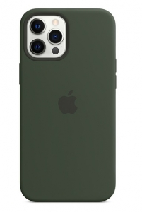 Apple Silicone MagSafe Case for iPhone 12 Pro Max - Cyprus Green
