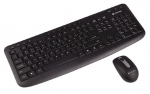 Dynabook KL50M Wireless Keyboard and Mouse Combo