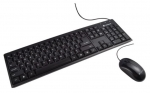 Dynabook KU40M Wired Keyboard and Mouse Combo
