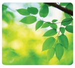 Fellowes Recycled Optical Mouse Pad - Leaves
