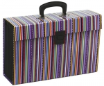 File Master Vivid 19 Pocket Expanding File - Stripe Purple